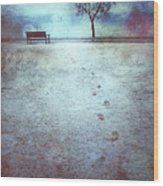 The Last Snowfall Wood Print