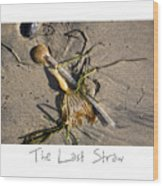 The Last Straw Wood Print by Peter Tellone