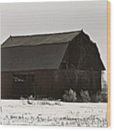 The Last Winter Wood Print