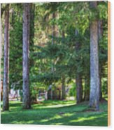 The Lawn At Hill's Resort Wood Print