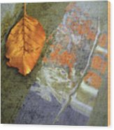 The Leaf And The Reflections Wood Print