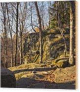The Ledges 4 Wood Print