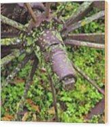The Lichen Wheel Wood Print
