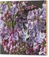 The Lilac  Wood Print