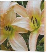 The Lillies Have It Wood Print