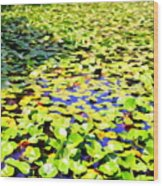 The Lily Pond #2 Wood Print