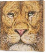 The Lion Roar Of Freedom Wood Print