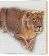 The Lioness - Vignette Wood Print