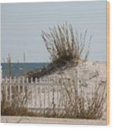The Little Dune And The White Picket Fence Wood Print