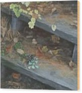 The Little Pine Cone Wood Print