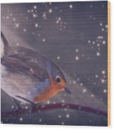 The Little Robin At The Night Wood Print