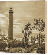 The Little Sable Lighthouse Wood Print