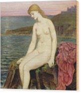 The Little Sea Maid  Wood Print