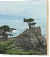The Lone Cypress Stands Alone Wood Print