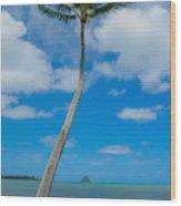 The Lone Palm Wood Print