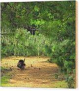 The Lone Survivor Wood Print