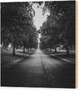 The Lone Walk Wood Print
