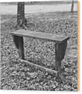 The Lonely Bench Wood Print