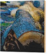 The Lonely Log Wood Print