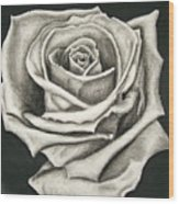 The Lonely Rose Wood Print