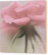 The Lonesome Rose Wood Print