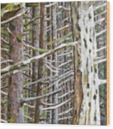 The Long Farewell Wood Print
