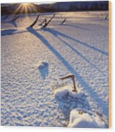 The Long Shadows Of Winter Wood Print