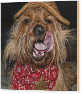 The Long Tongue Of The Law Wood Print