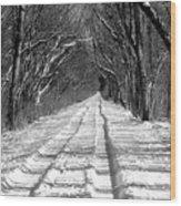 The Long Winter Walk Wood Print