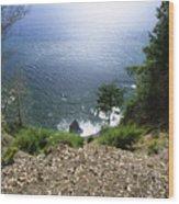 The Lost Coast - Sinkyone Wilderness Wood Print
