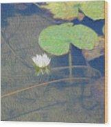 The Lotus Wood Print