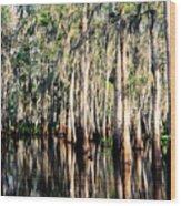 The Louisiana Bayou Wood Print