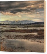 The Lower Pack River Idaho Wood Print