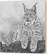 The Lynx 2017 Version Wood Print