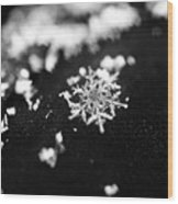 The Magic In A Snowflake Wood Print