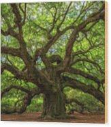 The Magical Angel Oak Tree Panorama  Wood Print