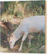 The Magical Deer 3 Wood Print