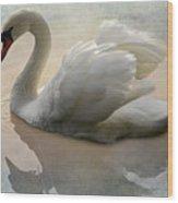 The Magical Swan  Wood Print