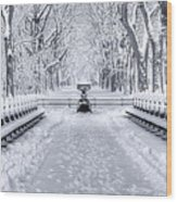 The Mall In Snow Central Park Wood Print