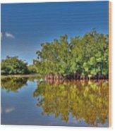 The Mangrove Coast Wood Print