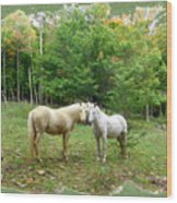 The Mares Watch Wood Print