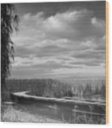 The Marsh-in Black And White Wood Print