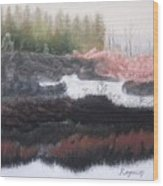 The Marsh Of Changing Color Wood Print by Harvey Rogosin