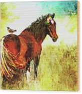 The Marvelous Mare Wood Print