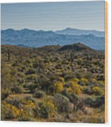 The Mcdowell Mountains Wood Print