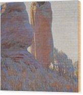 The Medicine Robe Wood Print by Maynard Dixon