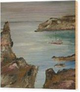 The Mediteranean Coastline Wood Print