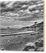 The Mewstone, Wembury Bay, Devon #view Wood Print