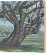 The Mighty Oak Wood Print