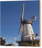 The Mill At Dybbol Wood Print